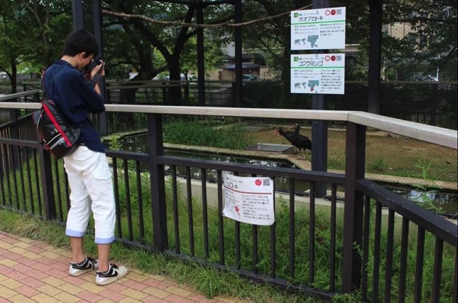 カメラ片手に京都市動物園へ