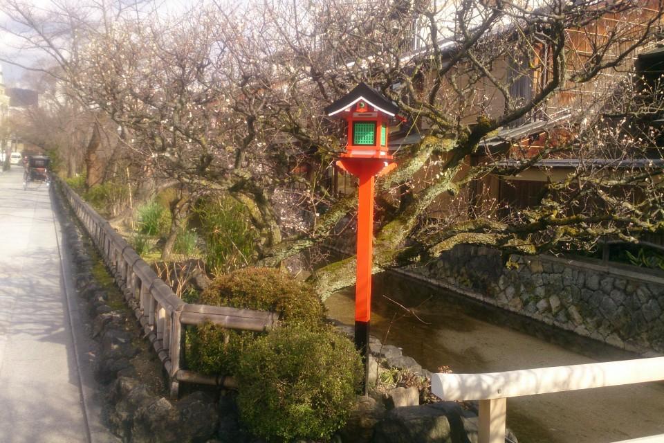 京都女子大学,大阪府出身,寺社仏閣
