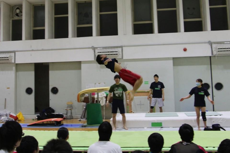 検証!1日でバク転はできるのか!?京都女子大学体操部の「新歓」に潜入