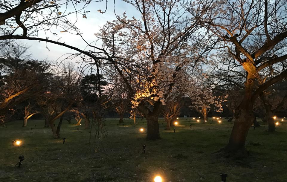 「人に、土地に、文化に。様々な刺激を受けて成長できる場所、京都」