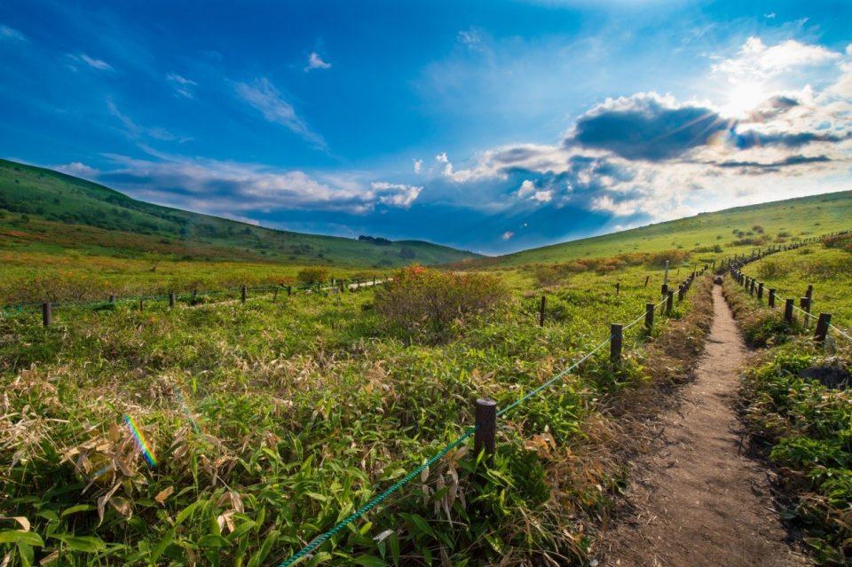 人生にも例えられる山道