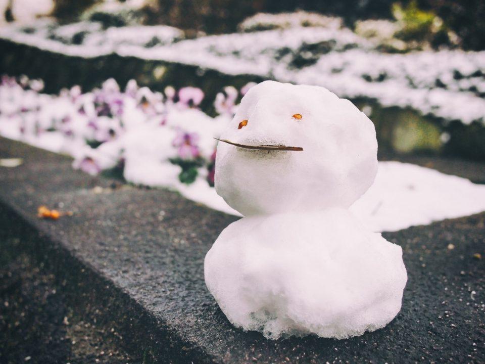 筆者が作った雪だるま