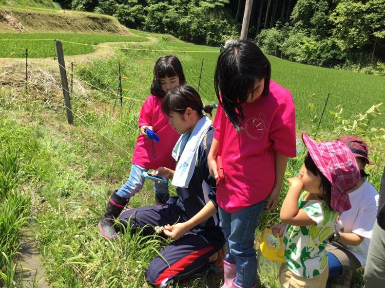 地域の子どもたちとお米作りに励む筆者