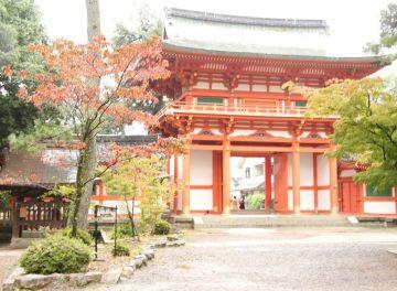 秋だ!紅葉だ!よし、京都へ行こう!市バスの運転手さんに秋の京都のおススメスポットを聞きました