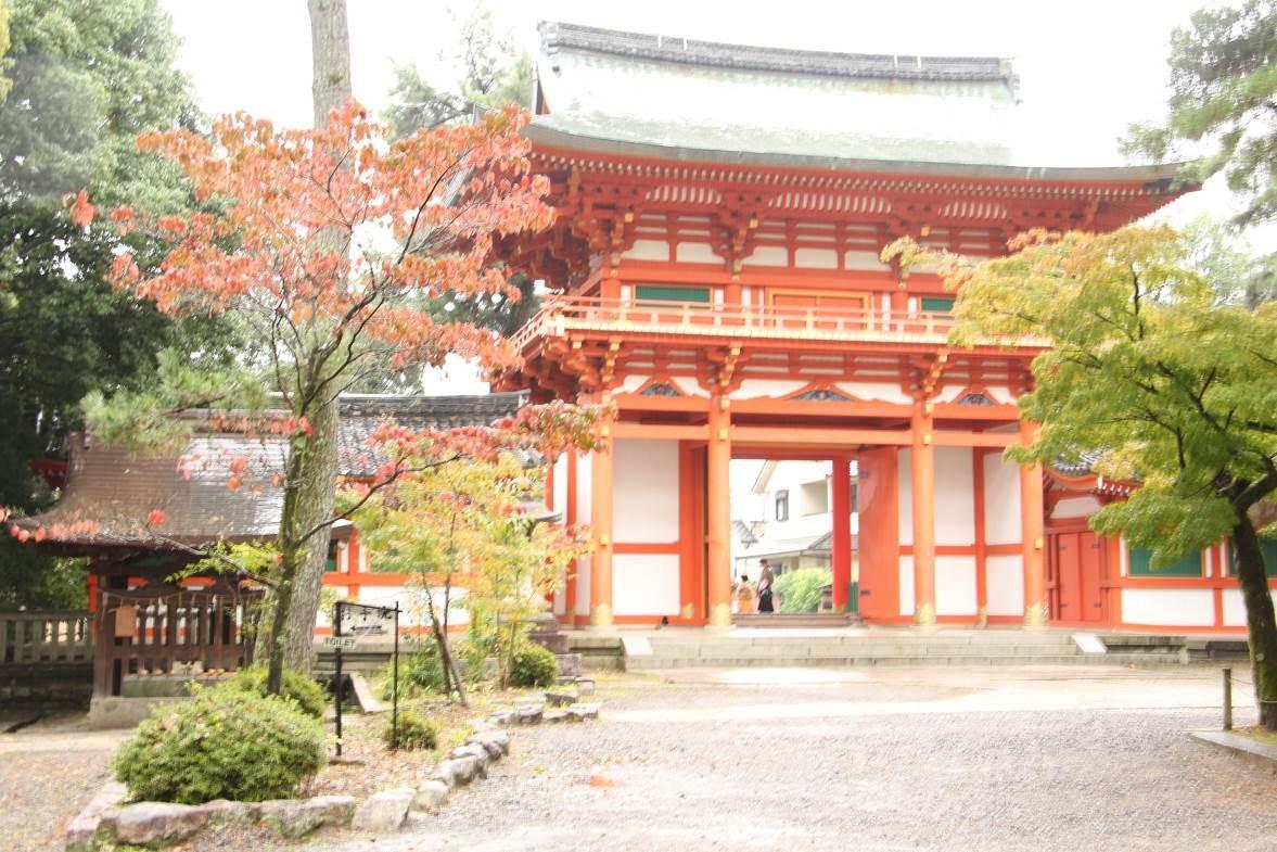 秋の京都のおススメスポットを市バスの運転手さんに聞いてきた!