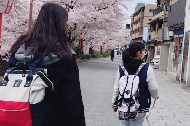 「京都」は国宝の玉手箱! 歴史のある町をもっと知りたい!