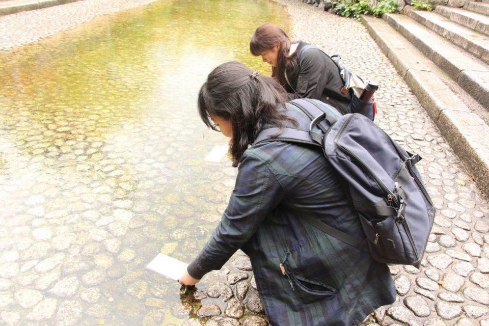 下鴨神社の水みくじ