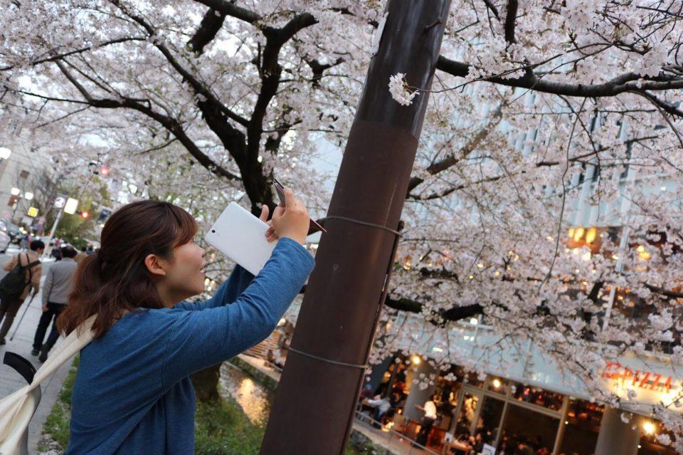 偶然出会った京都のまちに惹かれて