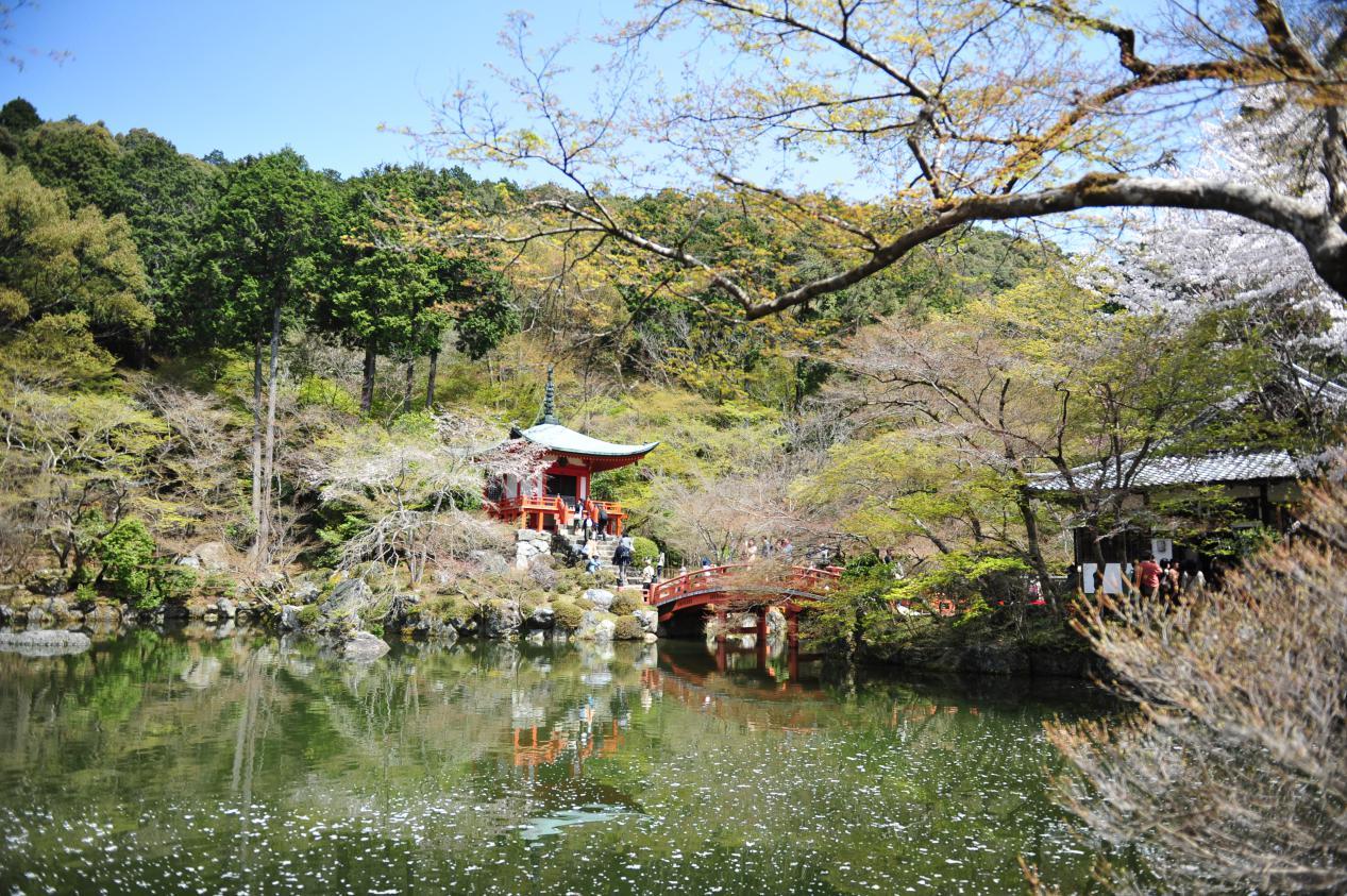同志社大学の留学生に聞く!京都に住み、学ぶことの魅力とは?
