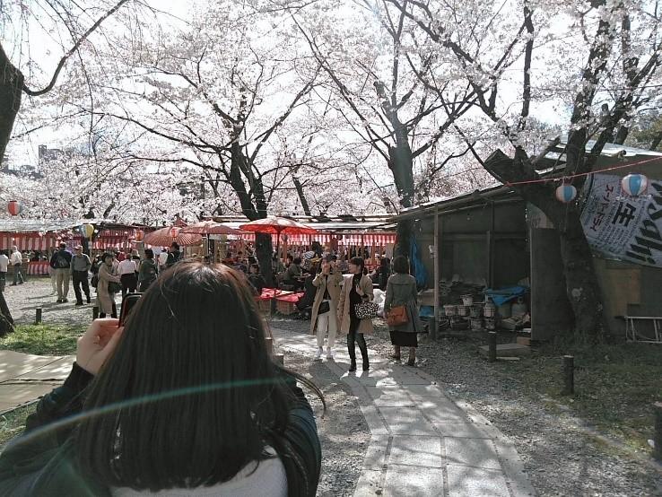 訪れる京都、暮らす京都