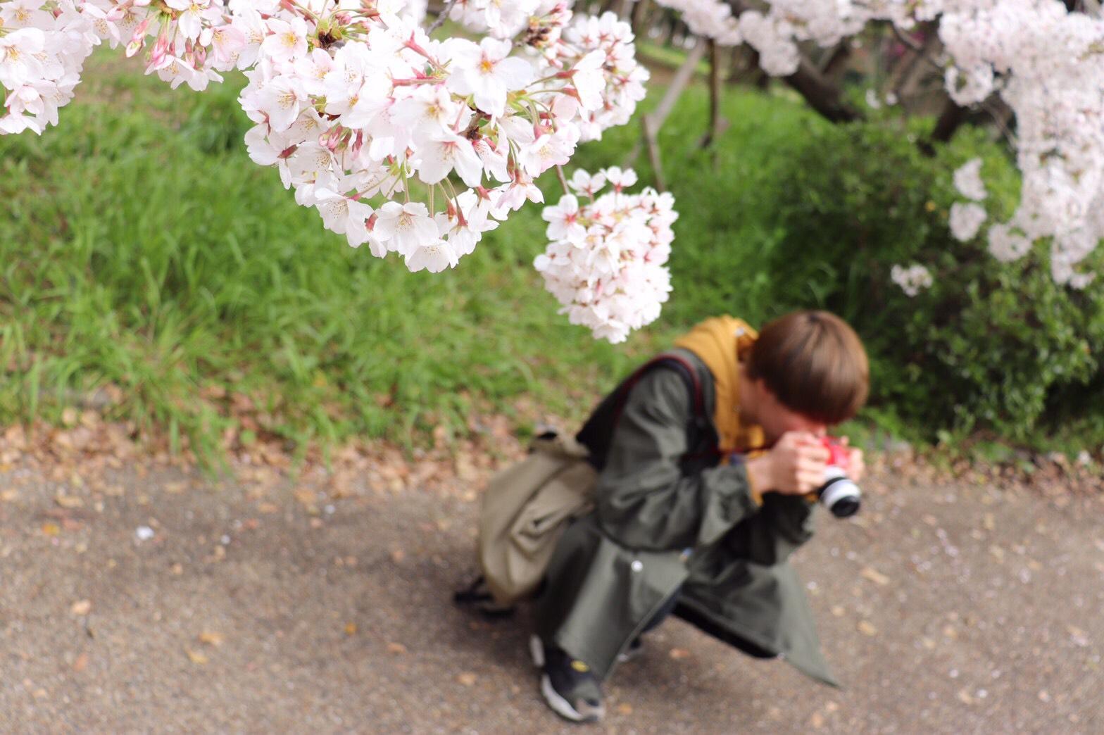 京都とは何か? – すべてである。