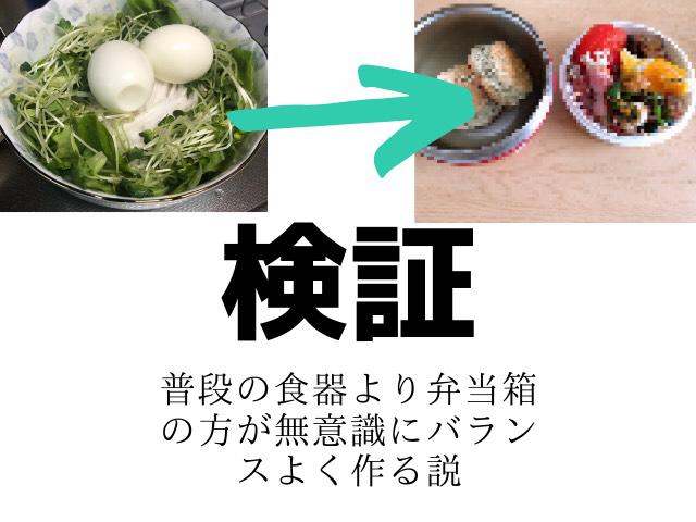 【検証】普段の食器より弁当箱の方が無意識にバランスよく作る説