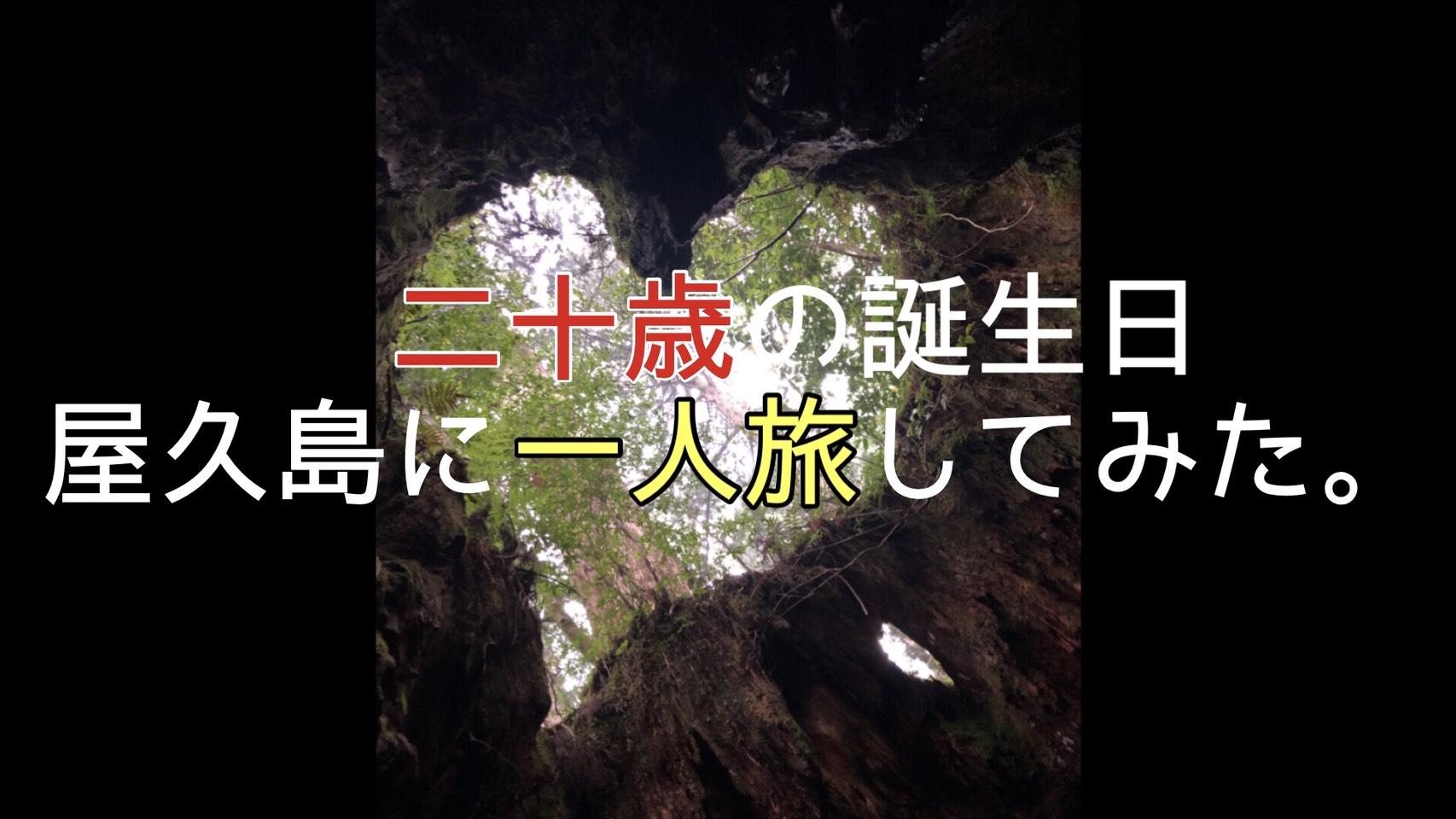 二十歳の誕生日、屋久島に一人旅してみた。