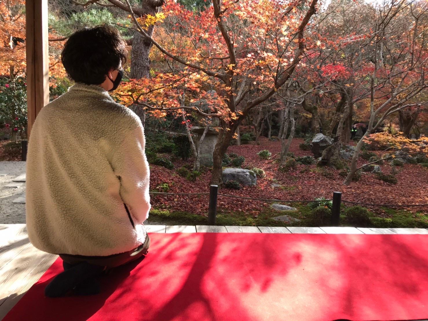 どさんこ、京都へ行く。